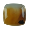 Montana Agate Gemstone - Rectangle Cabochon 15mm x 16mm Pkg - 1