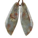 Fossil Coral Gemstone - Freeform Pendants 13mm x 37mm Matched Pair