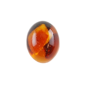 Amber Gemstone - Cabochon Oval 8mm x 10mm Pkg - 1